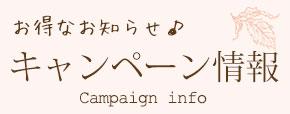 ネイル・アイラッシュのキャンペーン情報